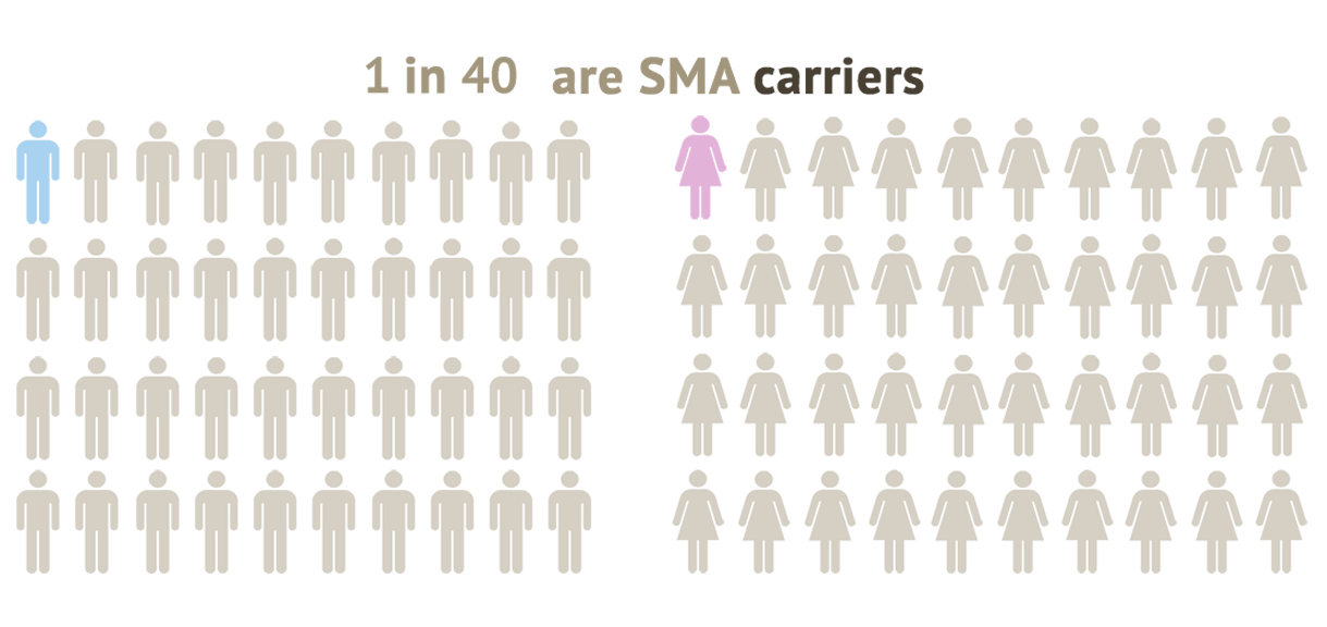 1 in 40 are carriers of SMA